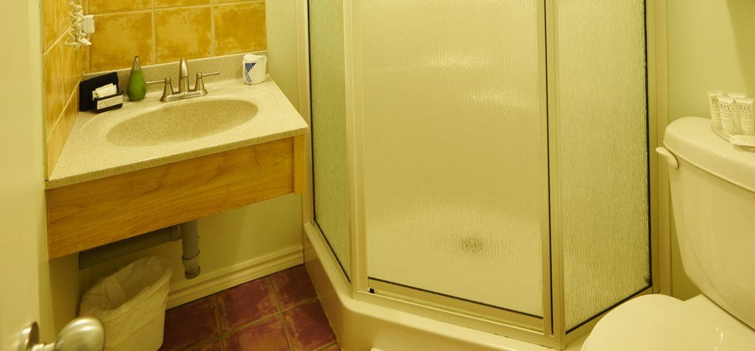 Bathroom in Room 206 featuring a walking shower with frosted glass window.